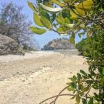 Low tide is the perfect time to circumnavigate the beach and mangroves