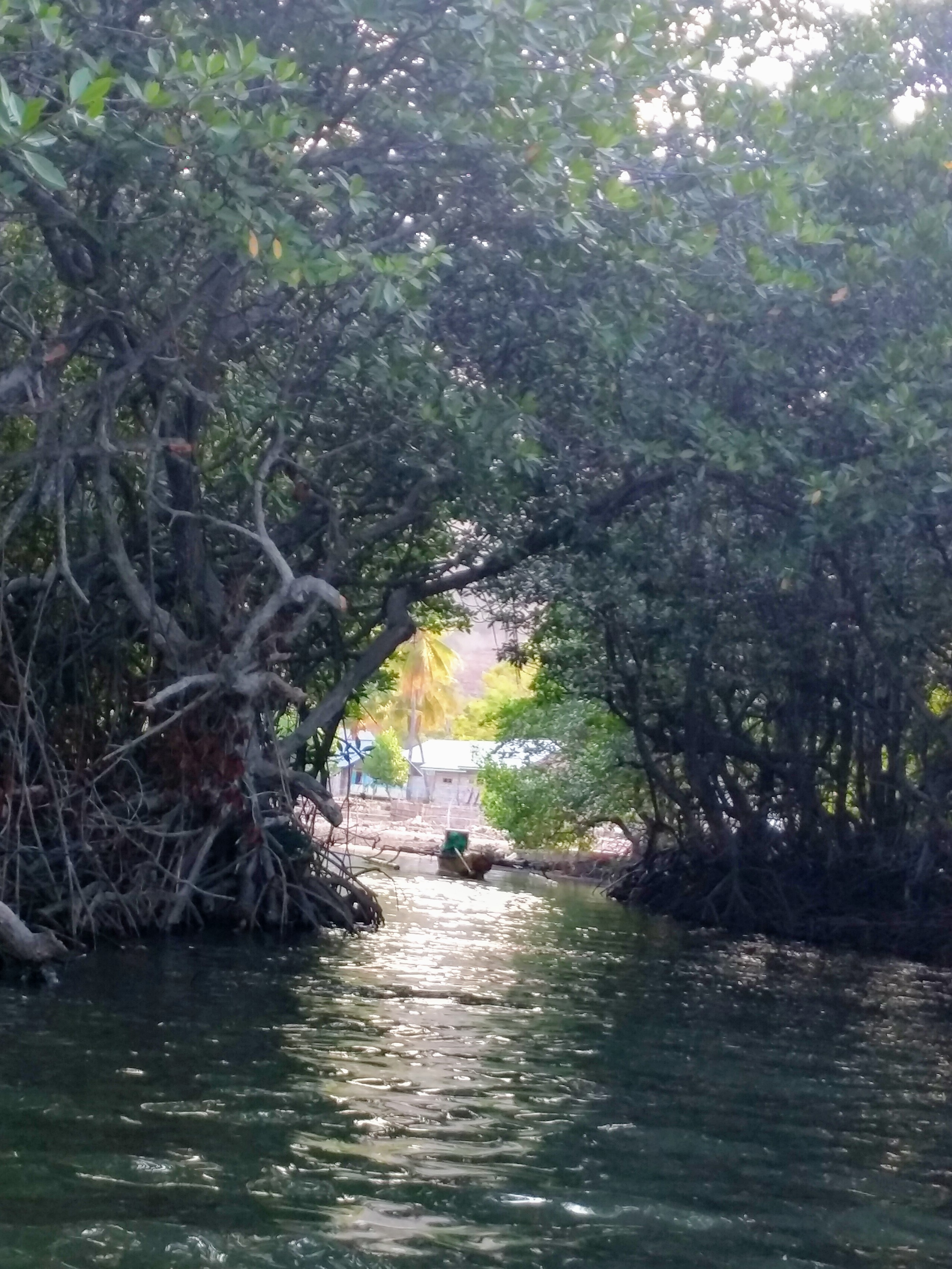 I call this the hobbit hole...a mad made entrance into the mangroves leading to one of the fishing villages